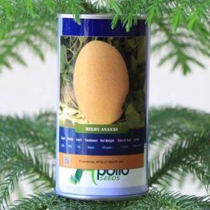 بذر خربزه استاندارد آناناس